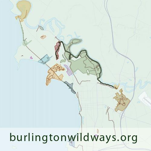 burlingtonwildways.org